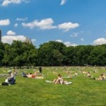 What to do in New York in July and August 2016 during summer vacation?
