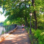 What to do in Central Park?