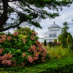 The New York Botanical Garden in the Bronx