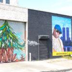 Discover the Street Art in Bushwick (Brooklyn)