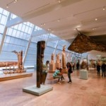 The New York: FREE museums, cultural centers, zoo's...