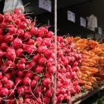 Discover the Union Square Greenmarket