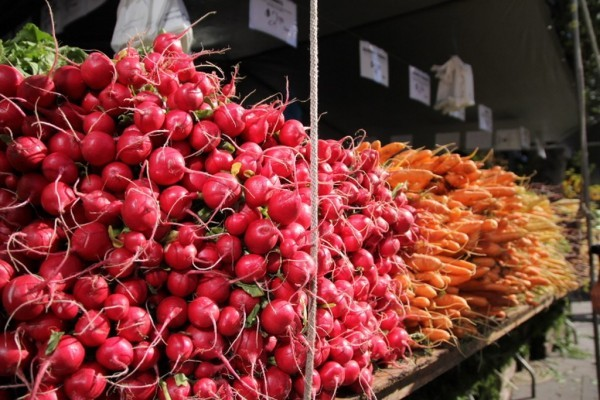 union-Square-Greenmarket-nyc