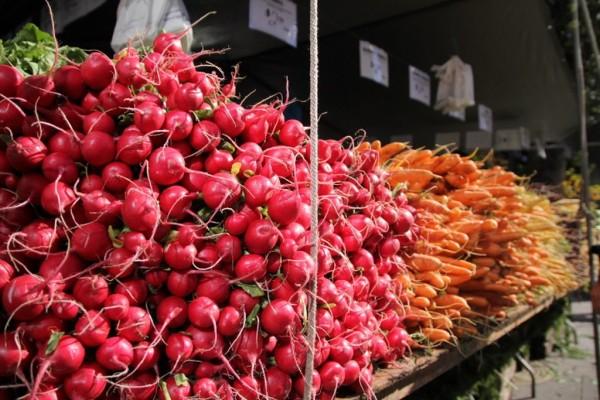 Saturday Food Markets Nyc