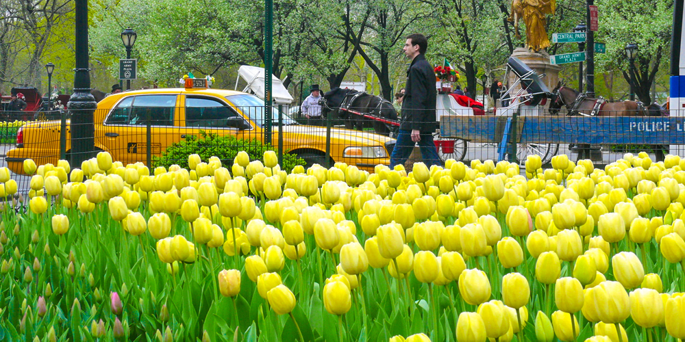 June Calendar New York City : Things to do in march and april easter spring break