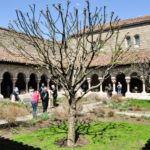 The Cloisters: Is it worth visiting it during your trip to New York?