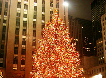 voyage noel 2018 new york What to do for Christmas and New Year's Eve in New York?   New  voyage noel 2018 new york