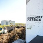 Brooklyn Grange, an alternative rooftop in New York City