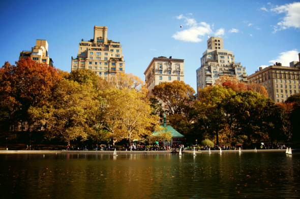 What to do in September and October 2013 in New York?