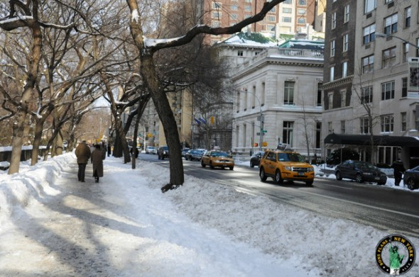 What to do in January and February 2014 in New York?
