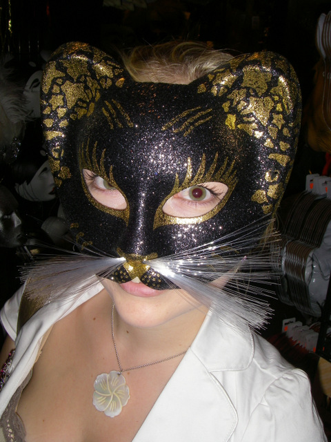 mask-cat-new-york