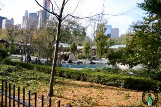 Zoo-Central-Park-NY-NYCTT