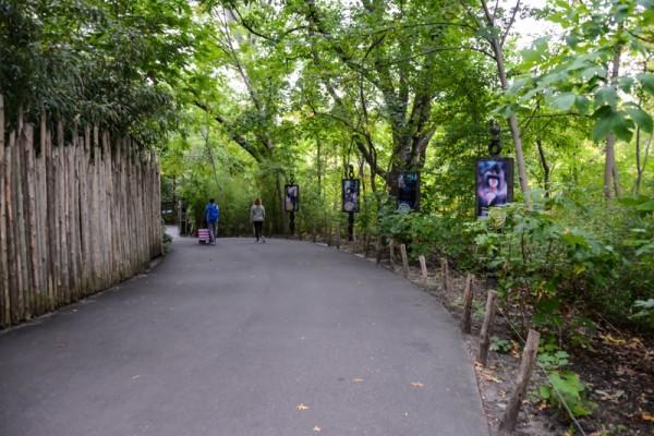zoo-bronx-nyc-NYCTT
