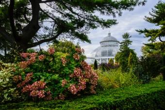 The new york botanical garden in the bronx - Restaurants near bronx botanical garden ...