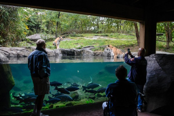 Image Result For Denver Zoo Can